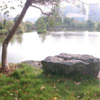 zhongguojiayou的头像