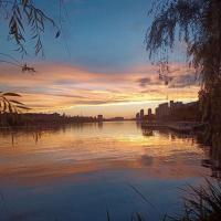 何永森(湖北) 的档案图片
